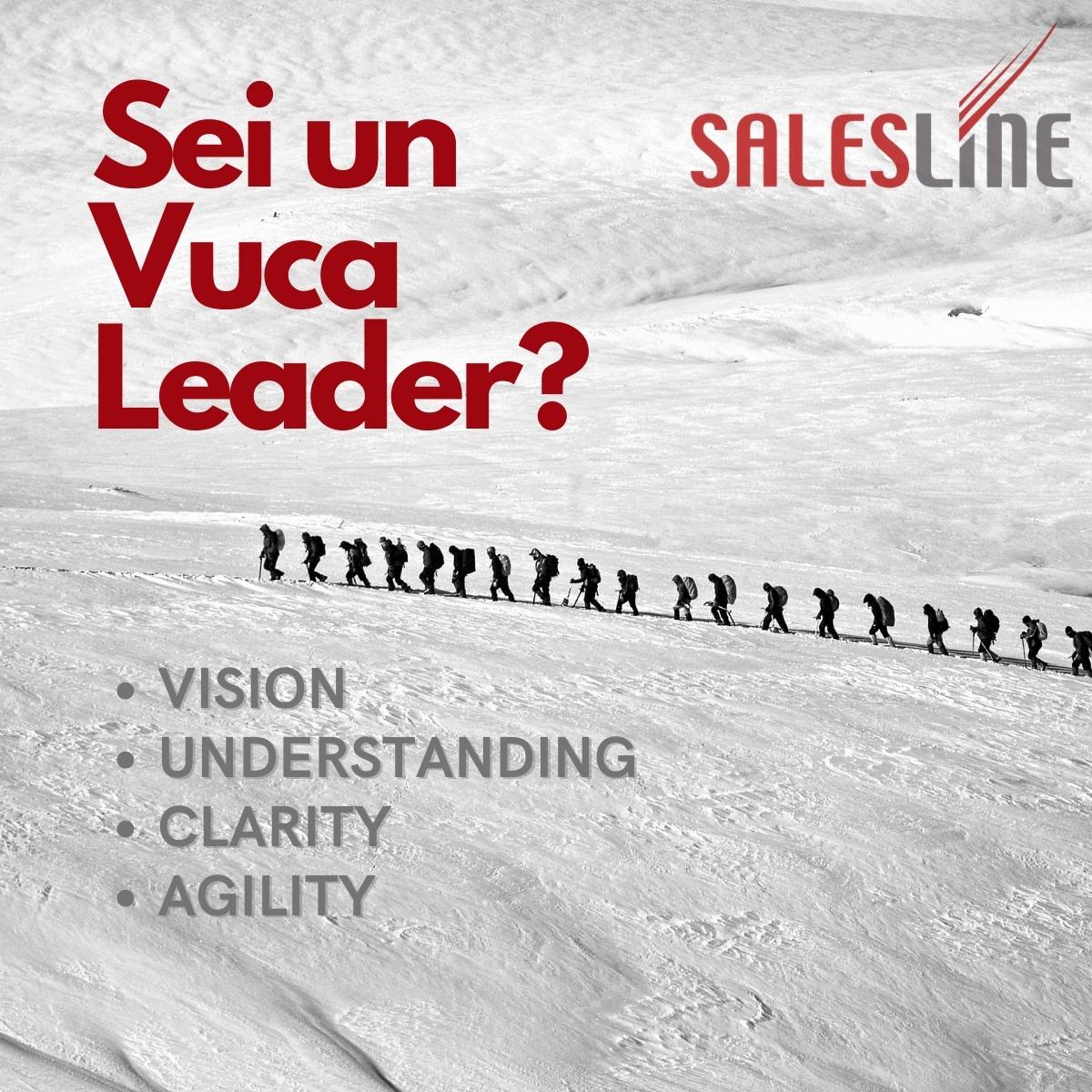 Sei un VUCA Leader?